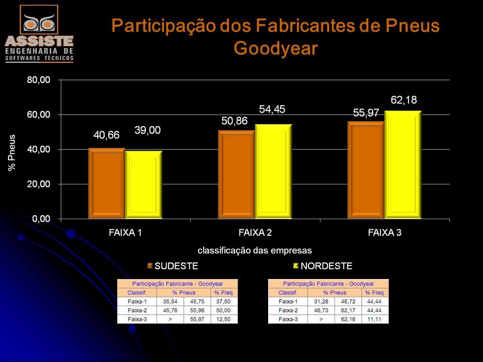 Participação dos Fabricantes de Pneus Michelin