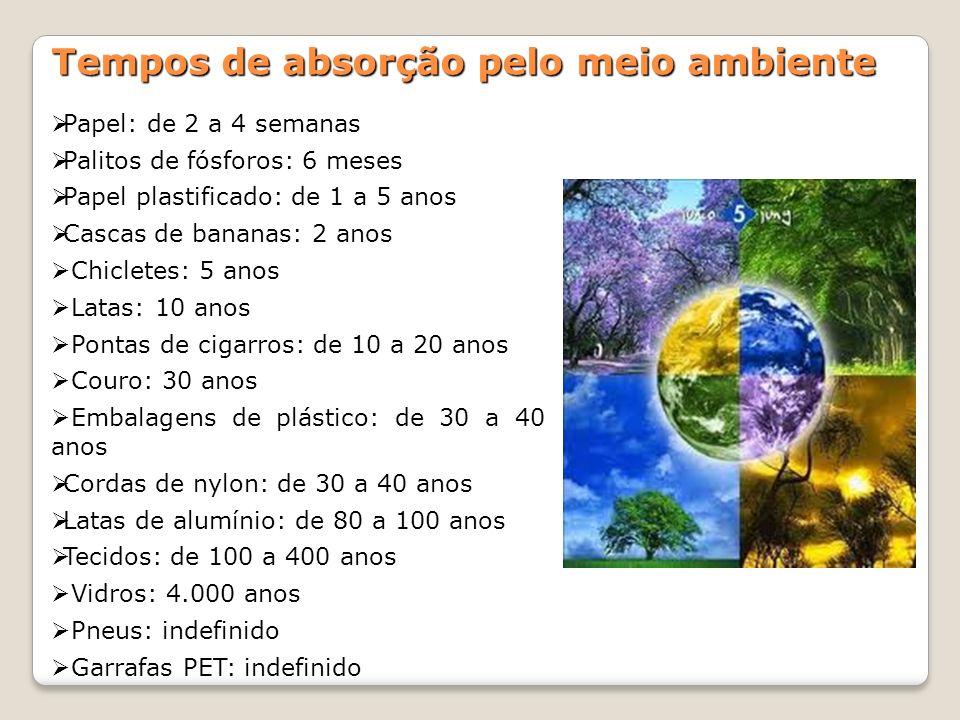 Tempos de absorção pelo meio ambiente Papel: de 2 a 4 semanas Palitos de fósforos: 6 meses Papel plastificado: de 1 a 5 anos Cascas de bananas: 2 anos