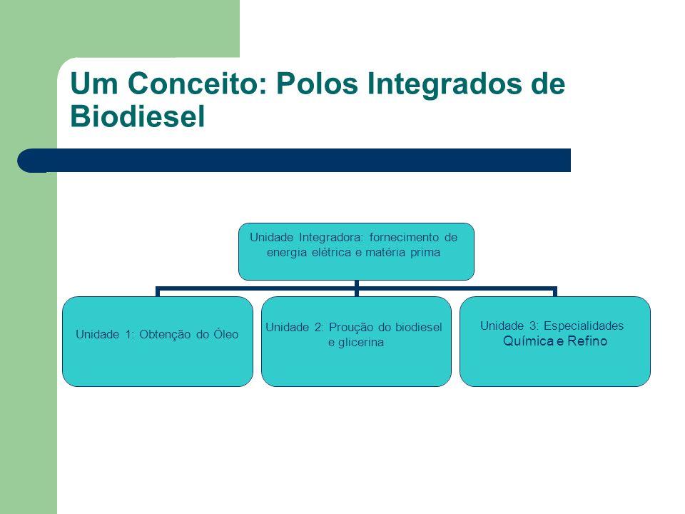 Um Conceito: Polos Integrados de Biodiesel Unidade Integradora: fornecimento de energia elétrica e matéria prima Unidade 1: Obtenção do Óleo Unidade 2