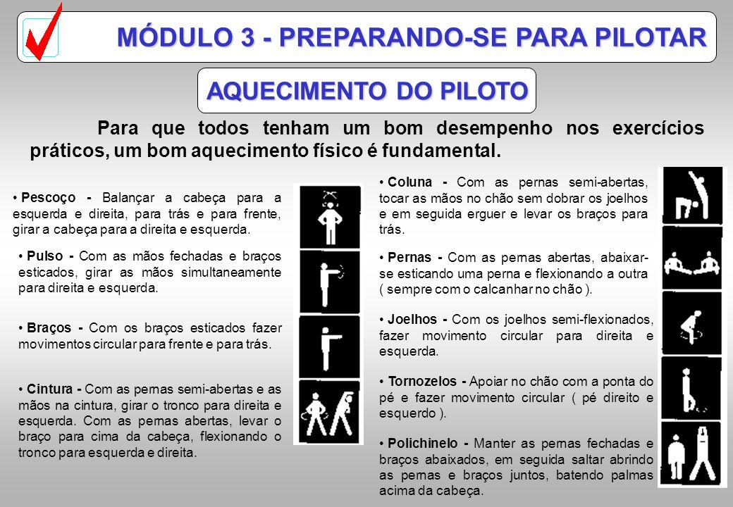 Módulo 3 Preparando-se para Pilotar