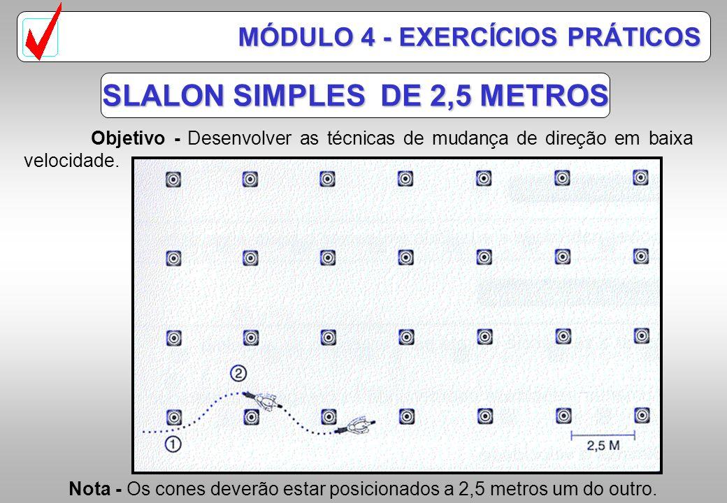 SLALON SIMPLES Objetivo - Desenvolver as técnicas de mudança rápida de direção, sincronizando postura, comandos de acelerador e freio para adquirir ba