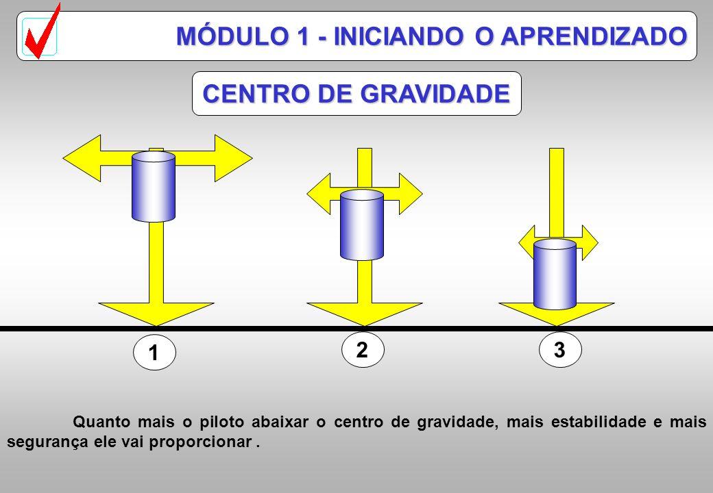 1 23 CENTRO DE GRAVIDADE MÓDULO 1 - INICIANDO O APRENDIZADO Quanto mais o piloto abaixar o centro de gravidade, mais estabilidade e mais segurança ele vai proporcionar.