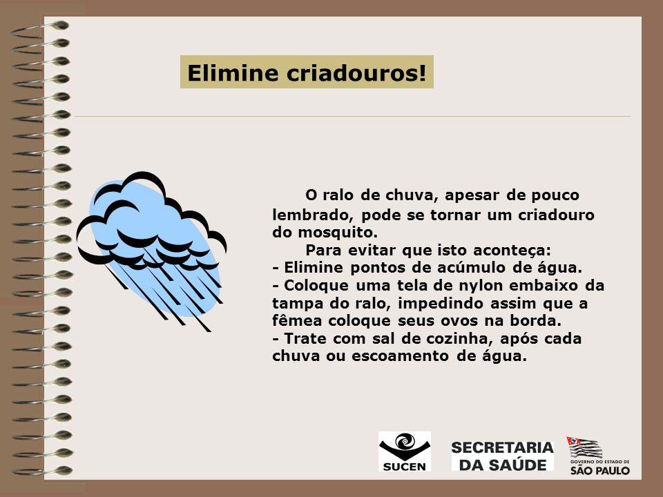 O ralo de chuva, apesar de pouco lembrado, pode se tornar um criadouro do mosquito.