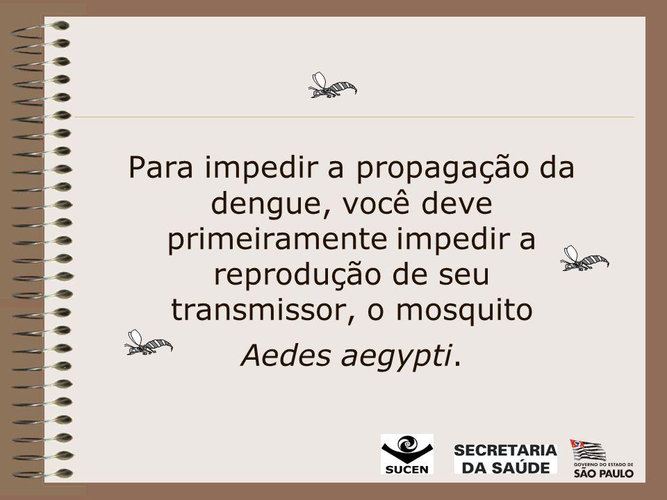 Para impedir a propagação da dengue, você deve primeiramente impedir a reprodução de seu transmissor, o mosquito Aedes aegypti.