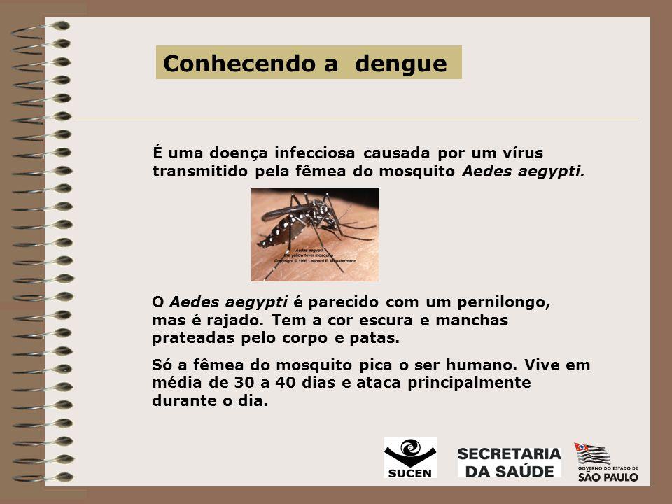 Como a dengue é transmitida Isto acontece através da picada da fêmea do Aedes aegypti, contaminada com o vírus da dengue.