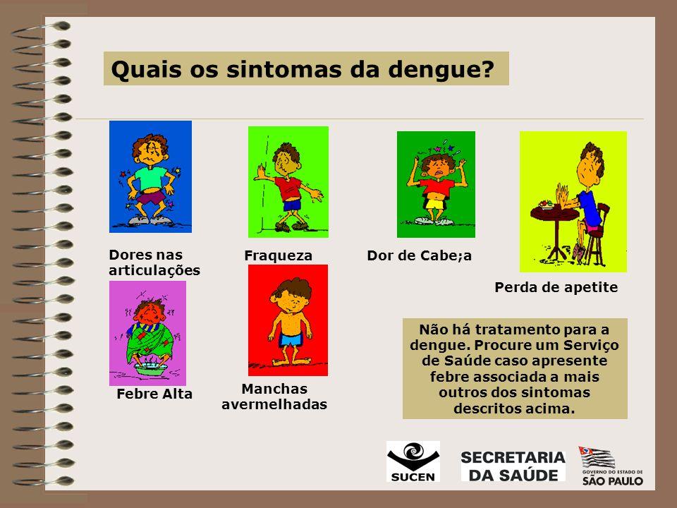 Quais os sintomas da dengue.