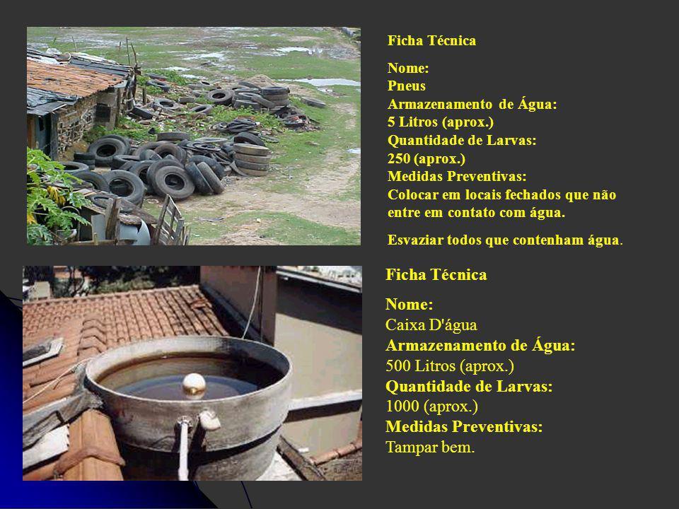 Ficha Técnica Nome: Pneus Armazenamento de Água: 5 Litros (aprox.) Quantidade de Larvas: 250 (aprox.) Medidas Preventivas: Colocar em locais fechados