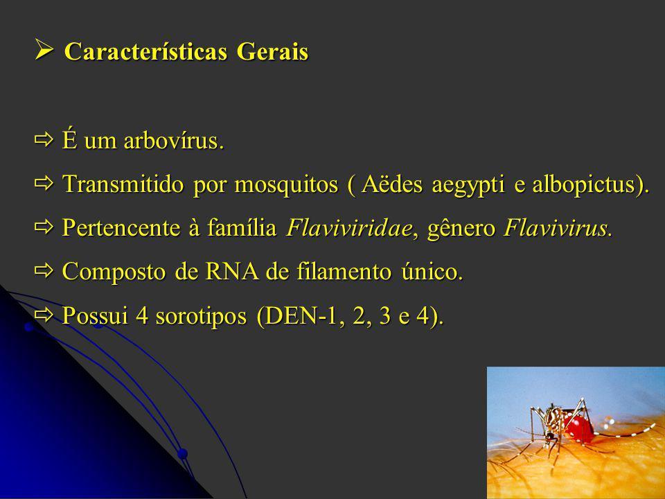 Características Gerais Características Gerais É um arbovírus. É um arbovírus. Transmitido por mosquitos ( Aëdes aegypti e albopictus). Transmitido por