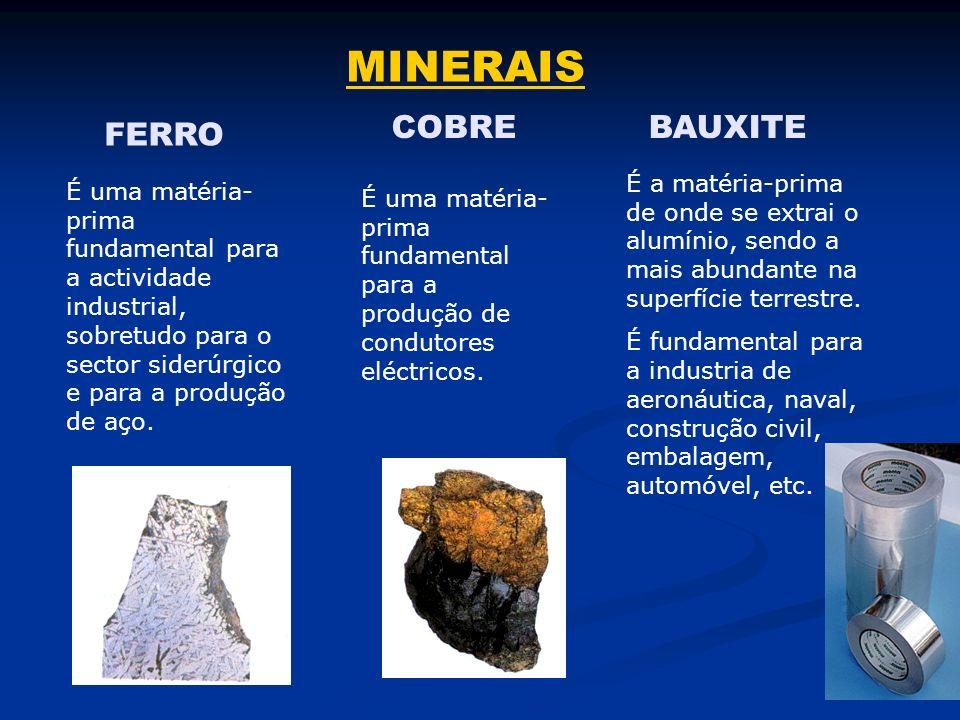 ENERGÉTICOS SOLAR CENTRAL ELÉCTRICA CENTRAL DE BIOENERGIA