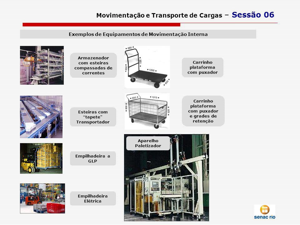 Movimentação e Transporte de Cargas – Sessão 06 Exemplos de Equipamentos de Movimentação Interna Armazenador com esteiras compassadas de correntes Apa