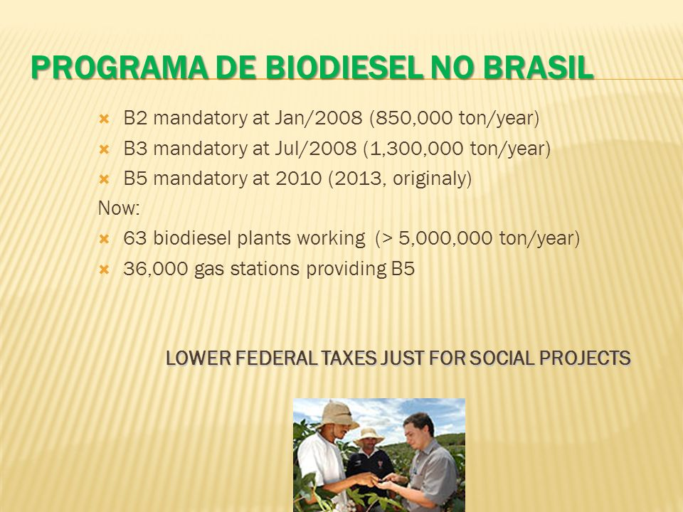 PROGRAMA DE BIODIESEL NO BRASIL B2 mandatory at Jan/2008 (850,000 ton/year) B3 mandatory at Jul/2008 (1,300,000 ton/year) B5 mandatory at 2010 (2013,