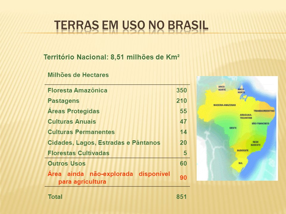 Milhões de Hectares Floresta Amazônica350 Pastagens210 Áreas Protegidas55 Culturas Anuais47 Culturas Permanentes14 Cidades, Lagos, Estradas e Pântanos