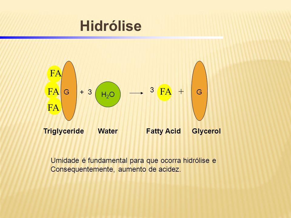 TriglycerideFatty Acid FA FA +FA WaterGlycerol Hidrólise + 3GG 3 H2OH2O Umidade é fundamental para que ocorra hidrólise e Consequentemente, aumento de