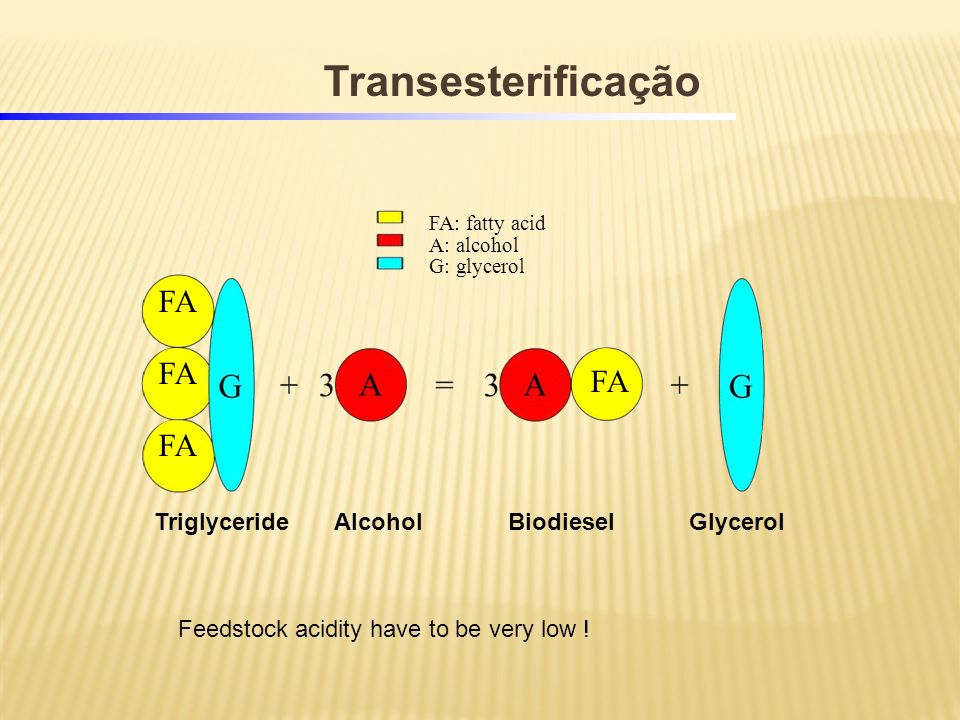 FA: fatty acid A: alcohol G: glycerol TriglycerideBiodiesel FA AlcoholGlycerol Transesterificação Feedstock acidity have to be very low !