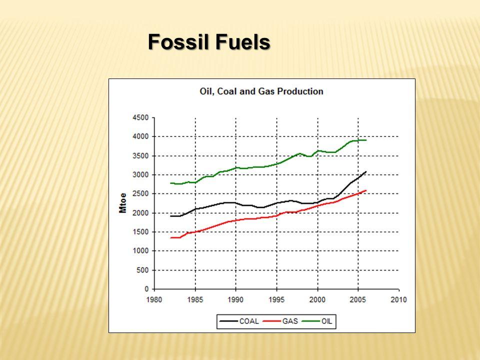 Macaúba Capacidade de produzir cerca de 5 ton óleo/ha.ano ou mais.