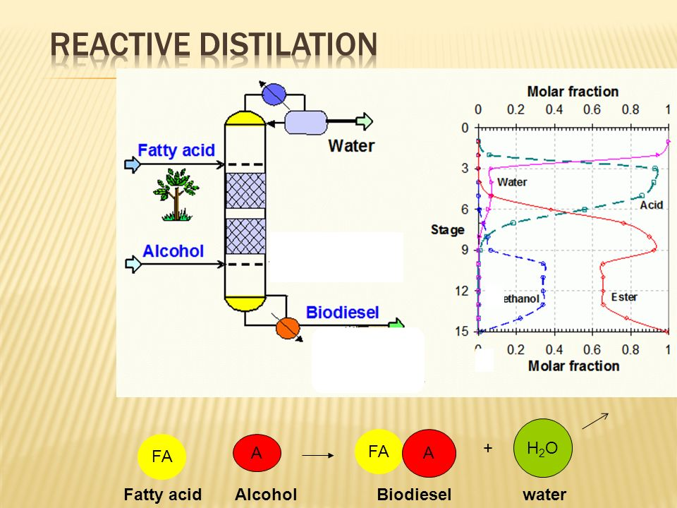 H2OH2O FA A A + Fatty acid Alcohol Biodiesel water