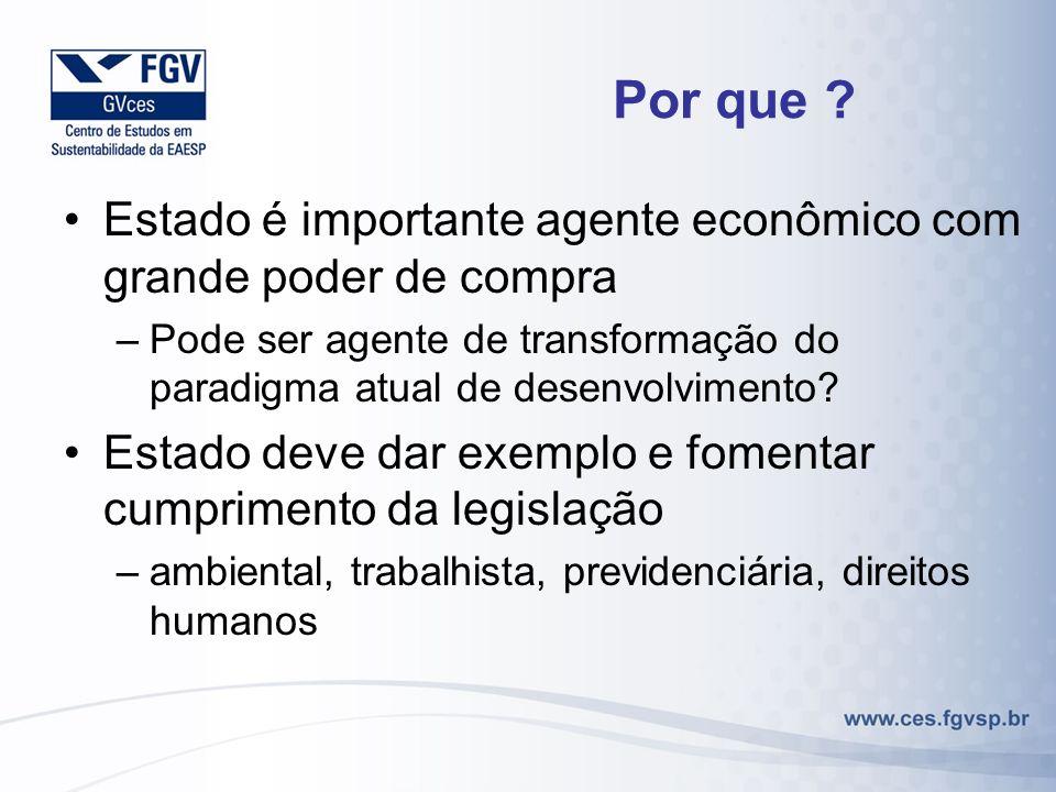 Por que ? Estado é importante agente econômico com grande poder de compra –Pode ser agente de transformação do paradigma atual de desenvolvimento? Est