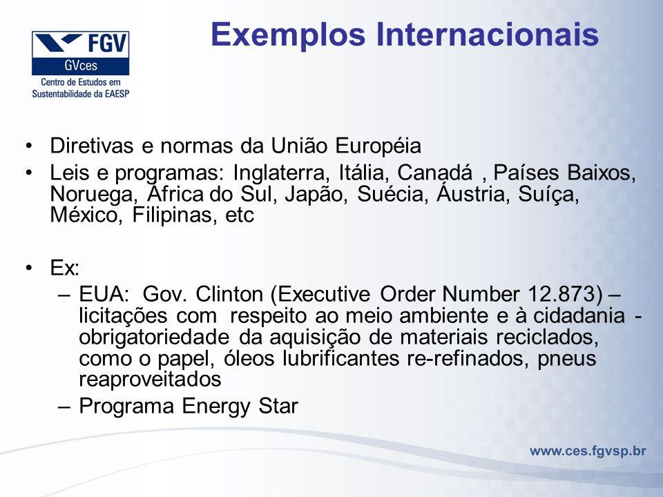 Exemplos Internacionais Diretivas e normas da União Européia Leis e programas: Inglaterra, Itália, Canadá, Países Baixos, Noruega, África do Sul, Japã