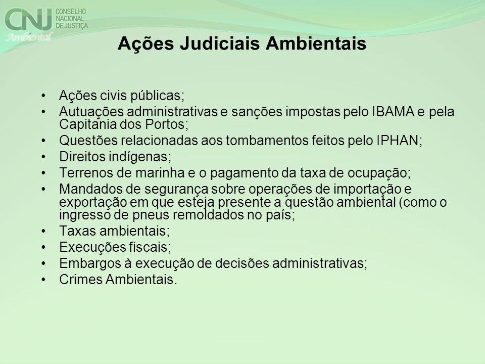 Ações Judiciais Ambientais Ações civis públicas; Autuações administrativas e sanções impostas pelo IBAMA e pela Capitania dos Portos; Questões relacio