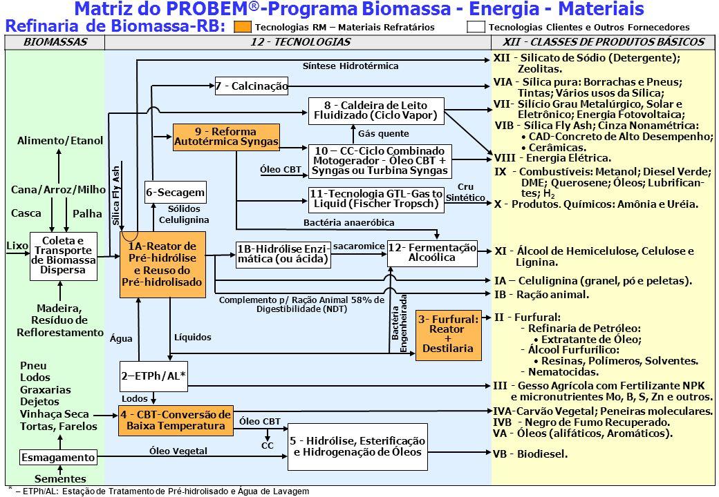 Tecnologias RM – Materiais Refratários Tecnologias Clientes e Outros Fornecedores Alimento/Etanol Casca Coleta e Transporte de Biomassa Dispersa Madei