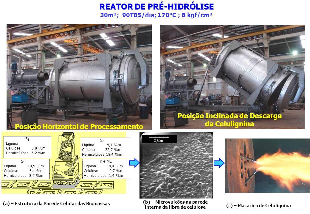 Posição Horizontal de Processamento Posição Inclinada de Descarga da Celulignina REATOR DE PRÉ-HIDRÓLISE 30m³; 90TBS/dia; 170°C ; 8 kgf/cm² S 3 Lignin