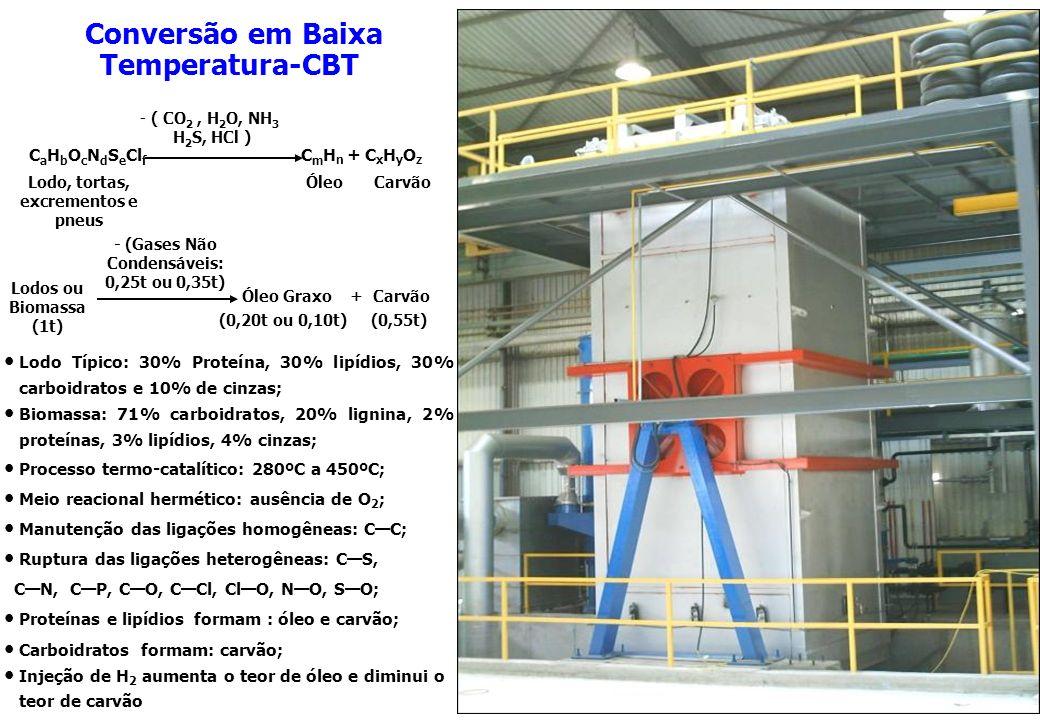 Lodo Típico: 30% Proteína, 30% lipídios, 30% carboidratos e 10% de cinzas; Biomassa: 71% carboidratos, 20% lignina, 2% proteínas, 3% lipídios, 4% cinz