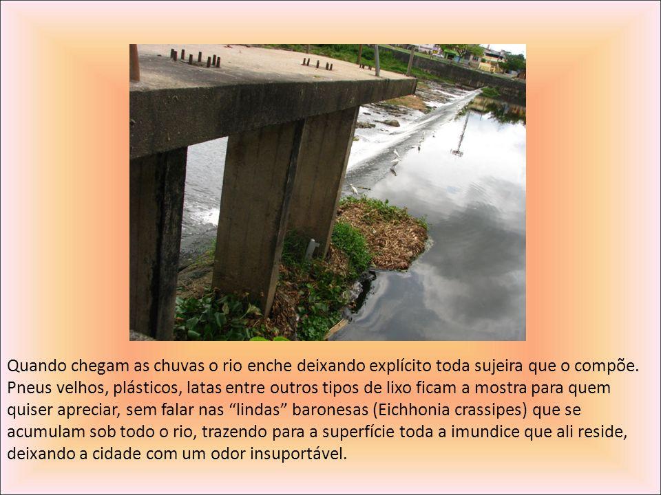 Quando chegam as chuvas o rio enche deixando explícito toda sujeira que o compõe. Pneus velhos, plásticos, latas entre outros tipos de lixo ficam a mo