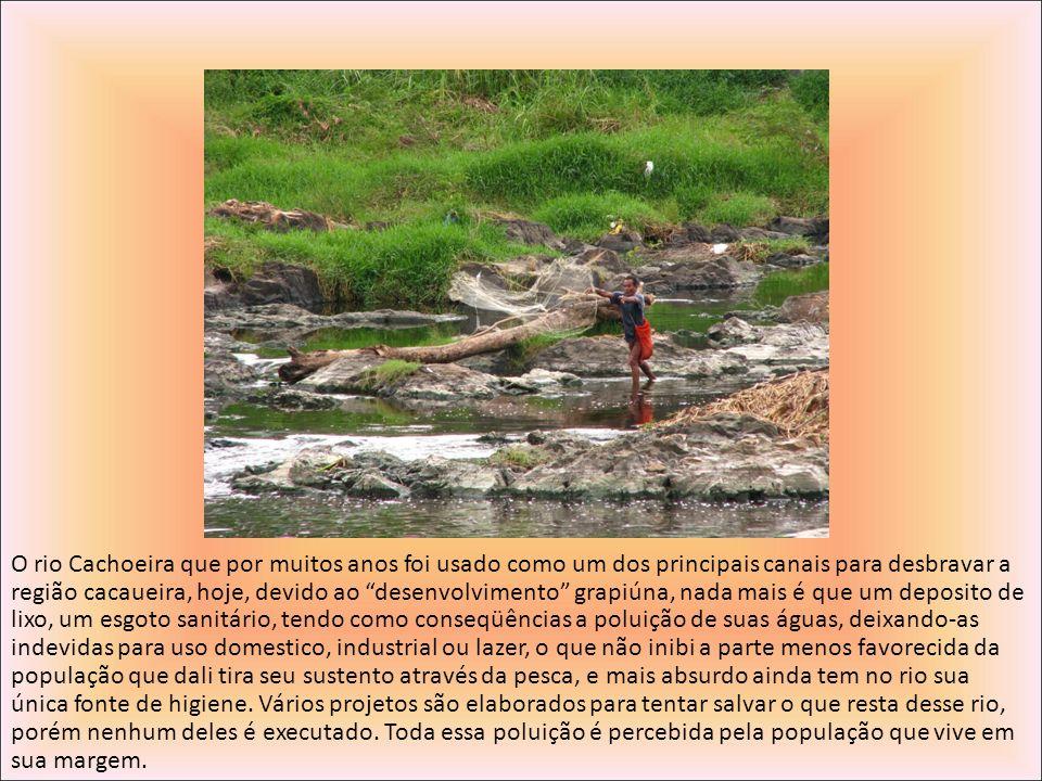 O rio Cachoeira que por muitos anos foi usado como um dos principais canais para desbravar a região cacaueira, hoje, devido ao desenvolvimento grapiún