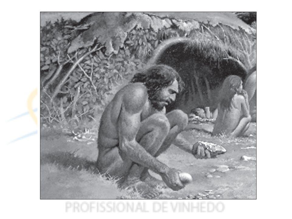 O uso do calor acompanha a evolução do ser humano desde os primeiros registros, ainda na pré história.
