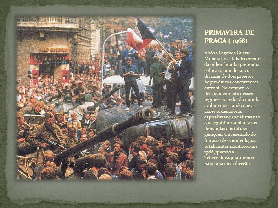 Após a Segunda Guerra Mundial, o estabelecimento da ordem bipolar pretendia colocar o mundo sob os ditames de dois projetos hegemônicos concorrentes e