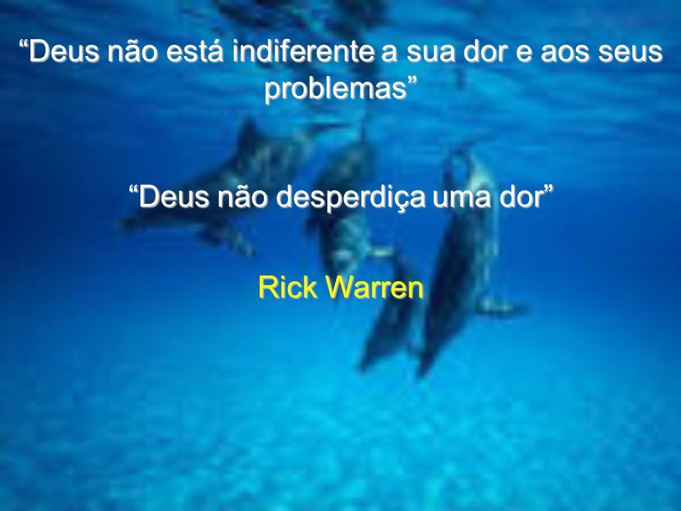 Deus não está indiferente a sua dor e aos seus problemas Deus não desperdiça uma dor Rick Warren