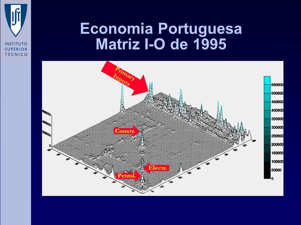 Economia Portuguesa Matriz I-O de 1995 Primary Inputs Electr. Petrol. Constr.