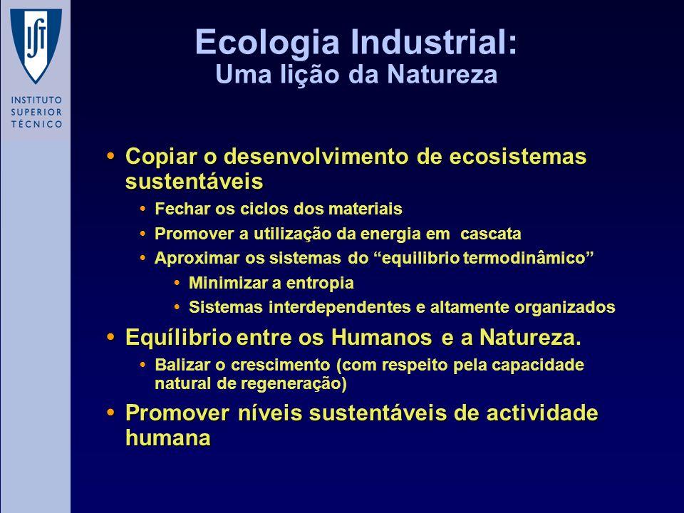 Ecologia Industrial: Uma lição da Natureza Copiar o desenvolvimento de ecosistemas sustentáveis Copiar o desenvolvimento de ecosistemas sustentáveis F