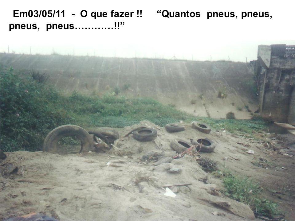 Em 26/04/11 - Tiram o lixo do leito e não limparão como deveria !