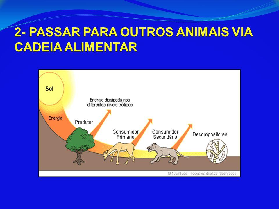2- PASSAR PARA OUTROS ANIMAIS VIA CADEIA ALIMENTAR