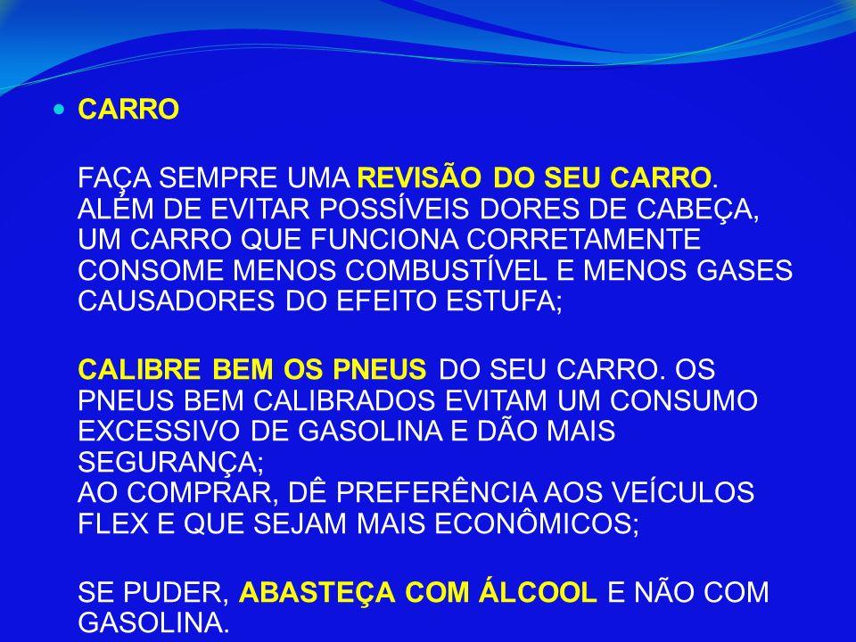 CARRO FAÇA SEMPRE UMA REVISÃO DO SEU CARRO.