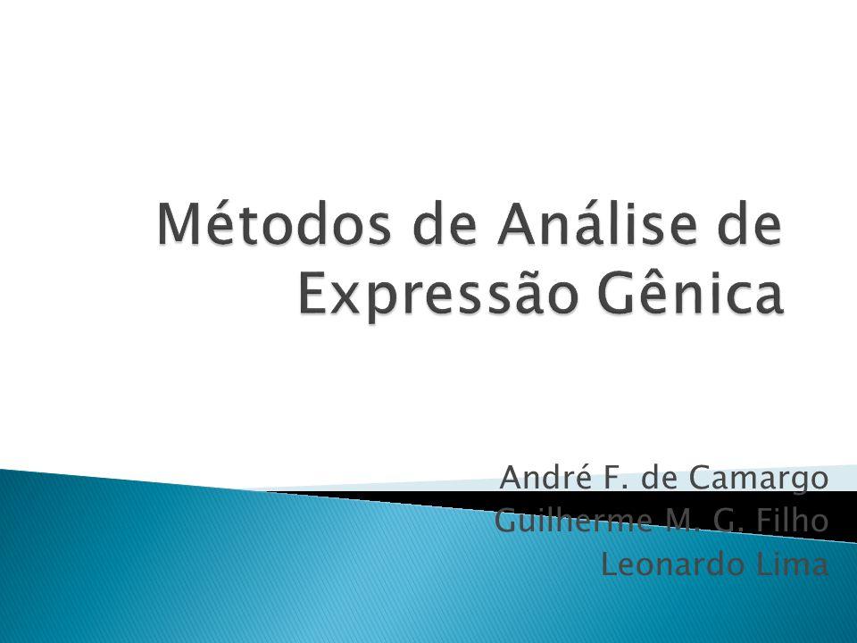 André F. de Camargo Guilherme M. G. Filho Leonardo Lima