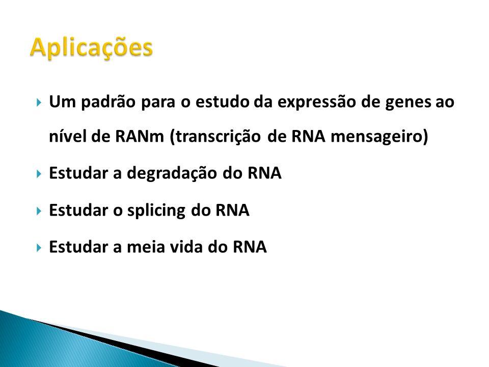 Um padrão para o estudo da expressão de genes ao nível de RANm (transcrição de RNA mensageiro) Estudar a degradação do RNA Estudar o splicing do RNA E