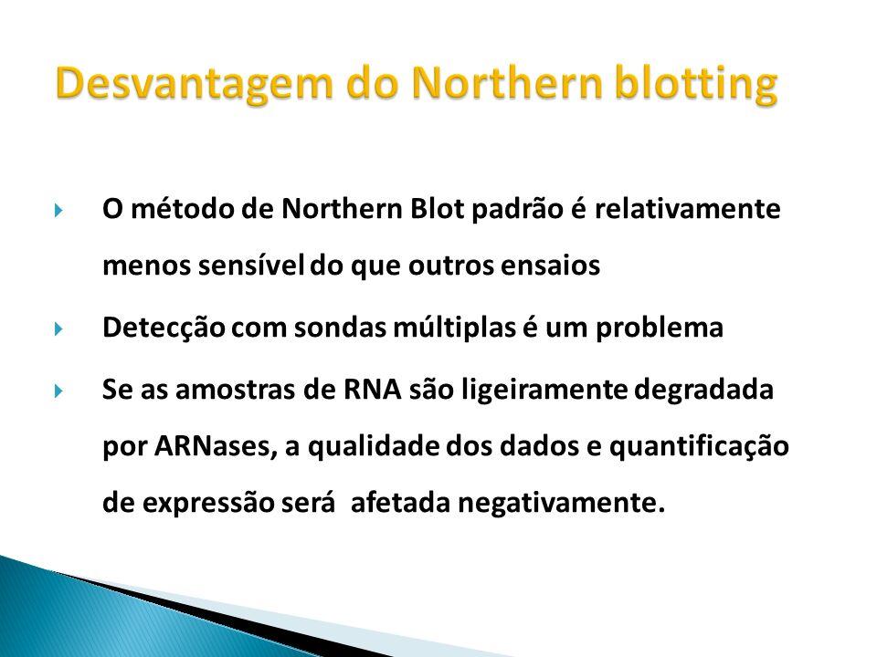O método de Northern Blot padrão é relativamente menos sensível do que outros ensaios Detecção com sondas múltiplas é um problema Se as amostras de RN
