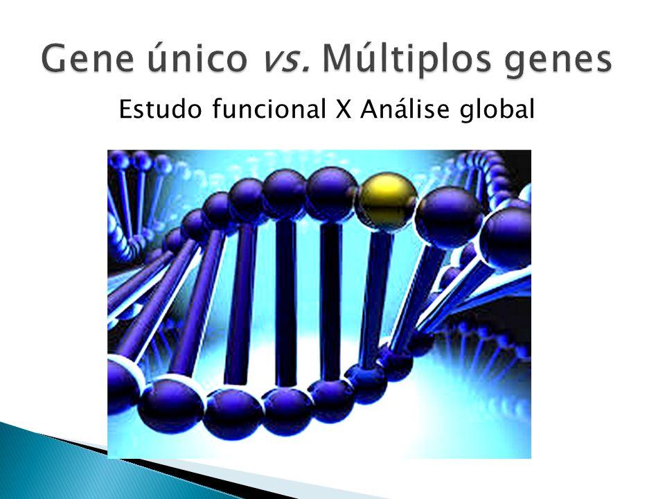 Estudo funcional X Análise global
