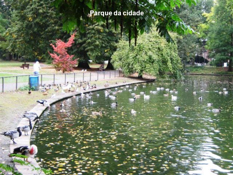 24 Parque da cidade