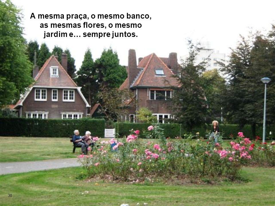 30 A mesma praça, o mesmo banco, as mesmas flores, o mesmo jardim e… sempre juntos.
