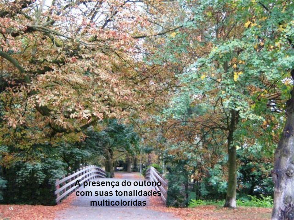 35 A presença do outono com suas tonalidades multicoloridas