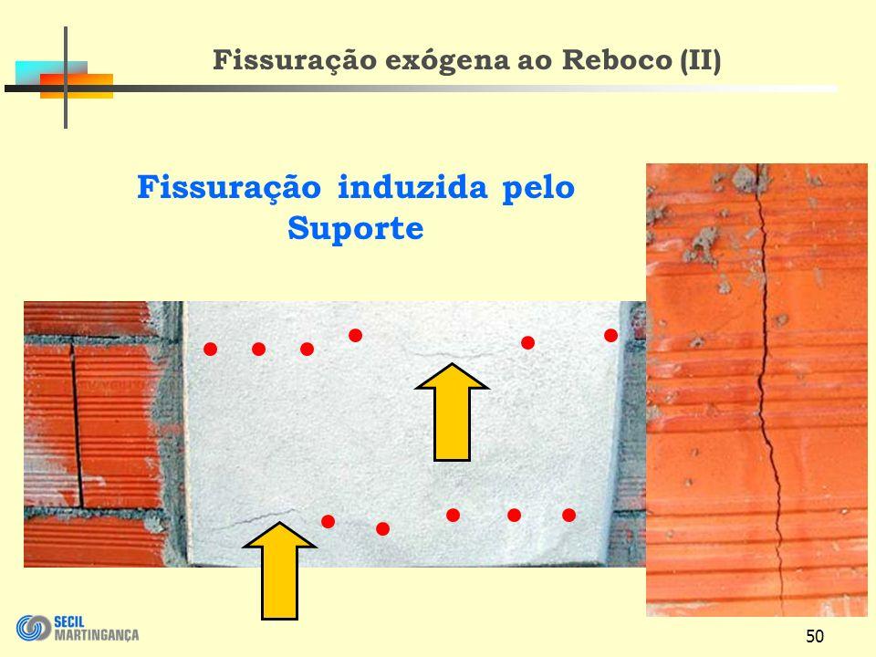 50 Fissuração induzida pelo Suporte Fissuração exógena ao Reboco (II)
