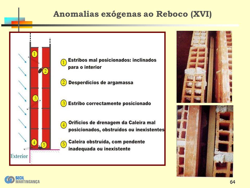 64 Anomalias exógenas ao Reboco (XVI)