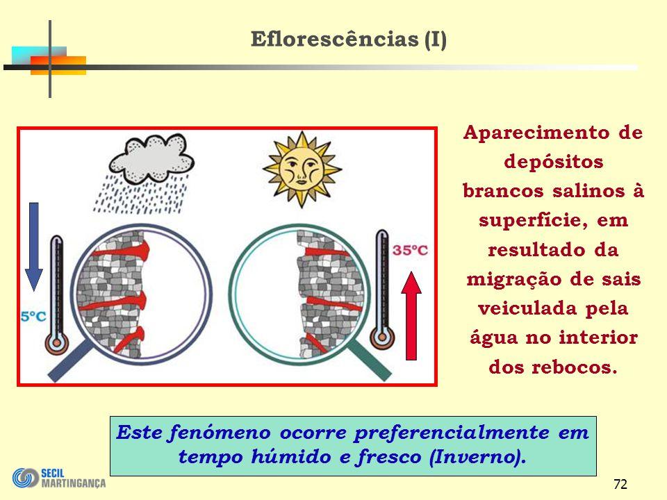 72 Eflorescências (I) Aparecimento de depósitos brancos salinos à superfície, em resultado da migração de sais veiculada pela água no interior dos rebocos.
