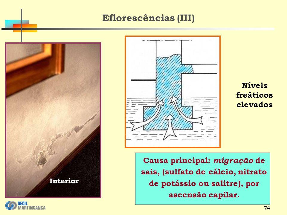 74 Eflorescências (III) Causa principal: migração de sais, (sulfato de cálcio, nitrato de potássio ou salitre), por ascensão capilar.