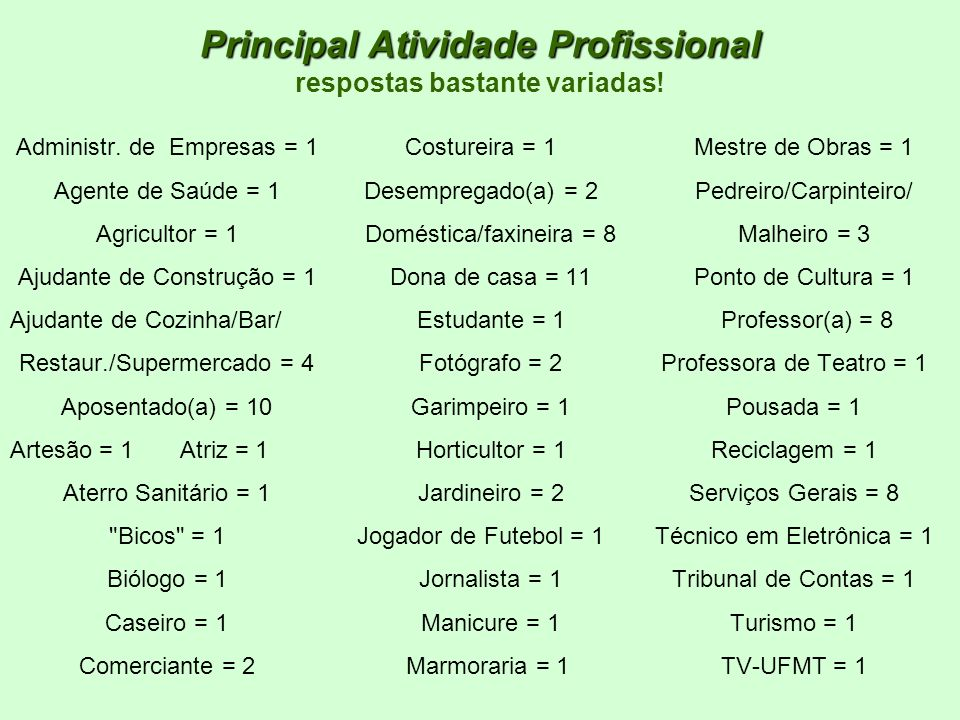 Principal Atividade Profissional Principal Atividade Profissional respostas bastante variadas! Administr. de Empresas = 1 Agente de Saúde = 1 Agricult
