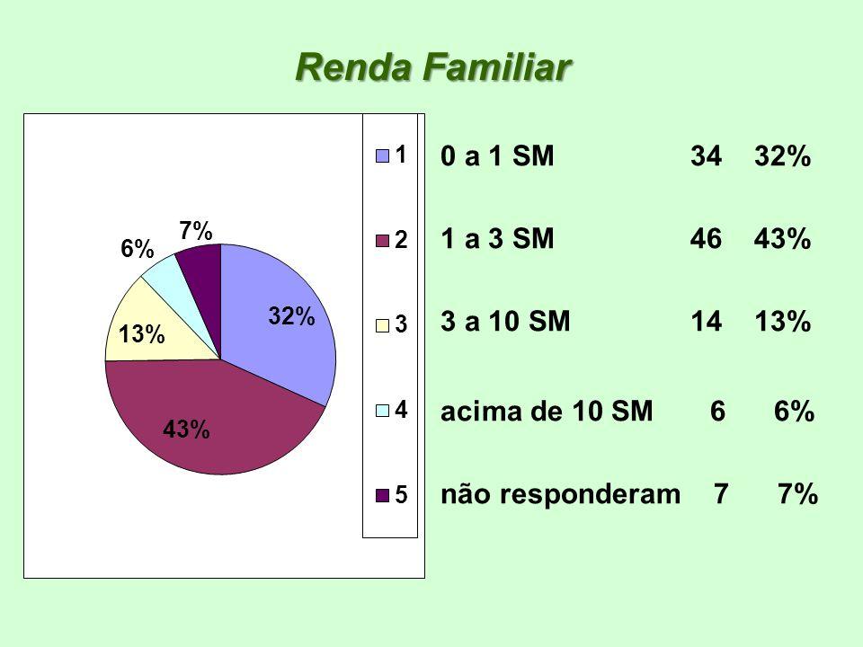 Renda Familiar 0 a 1 SM 34 32% 1 a 3 SM 46 43% 3 a 10 SM 14 13% acima de 10 SM 6 6% não responderam 7 7%