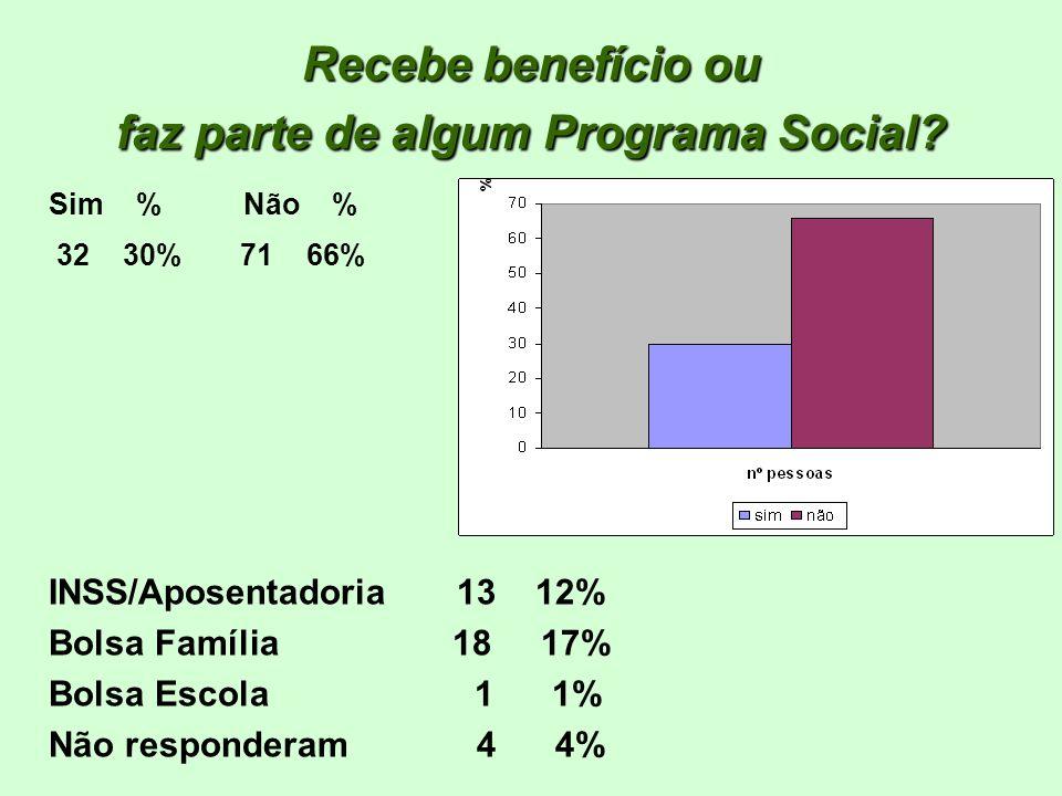Recebe benefício ou faz parte de algum Programa Social? Sim % Não % INSS/Aposentadoria 13 12% Bolsa Família 18 17% Bolsa Escola 1 1% Não responderam 4